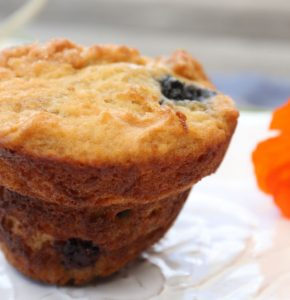Close up of a blueberry muffin on a white plate with a partial orange poppy on the right side of the image